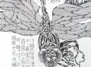 钢笔画【点水蜻蜓款款飞】