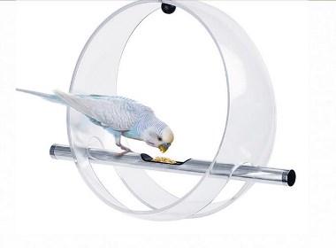 不平凡的喂鸟器
