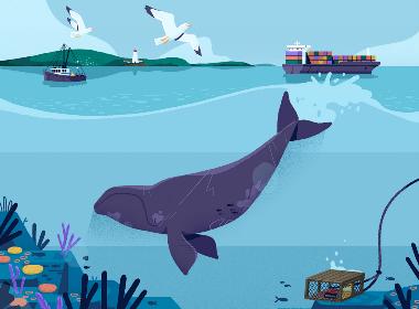Ocean iBook海底畅想插画欣赏