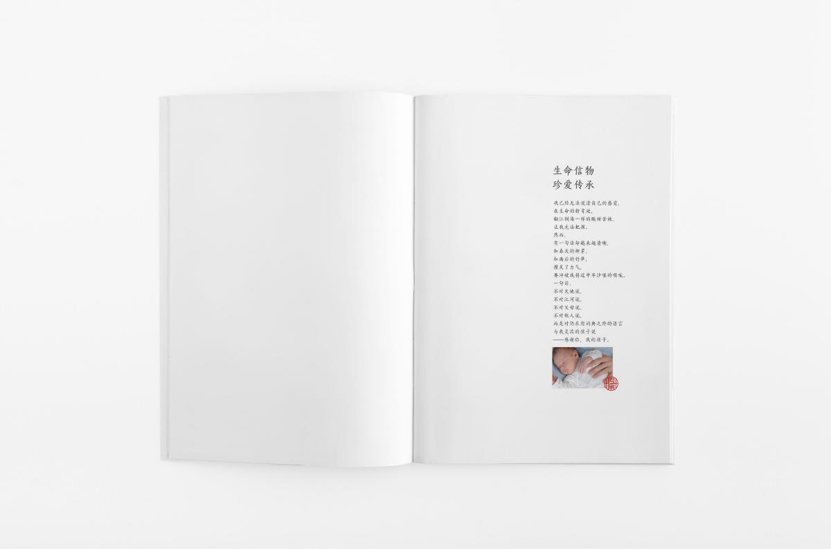 婴幼儿纪念品产品册设计 婴幼儿纪念品宣传册设计  胎毛笔产品册设计