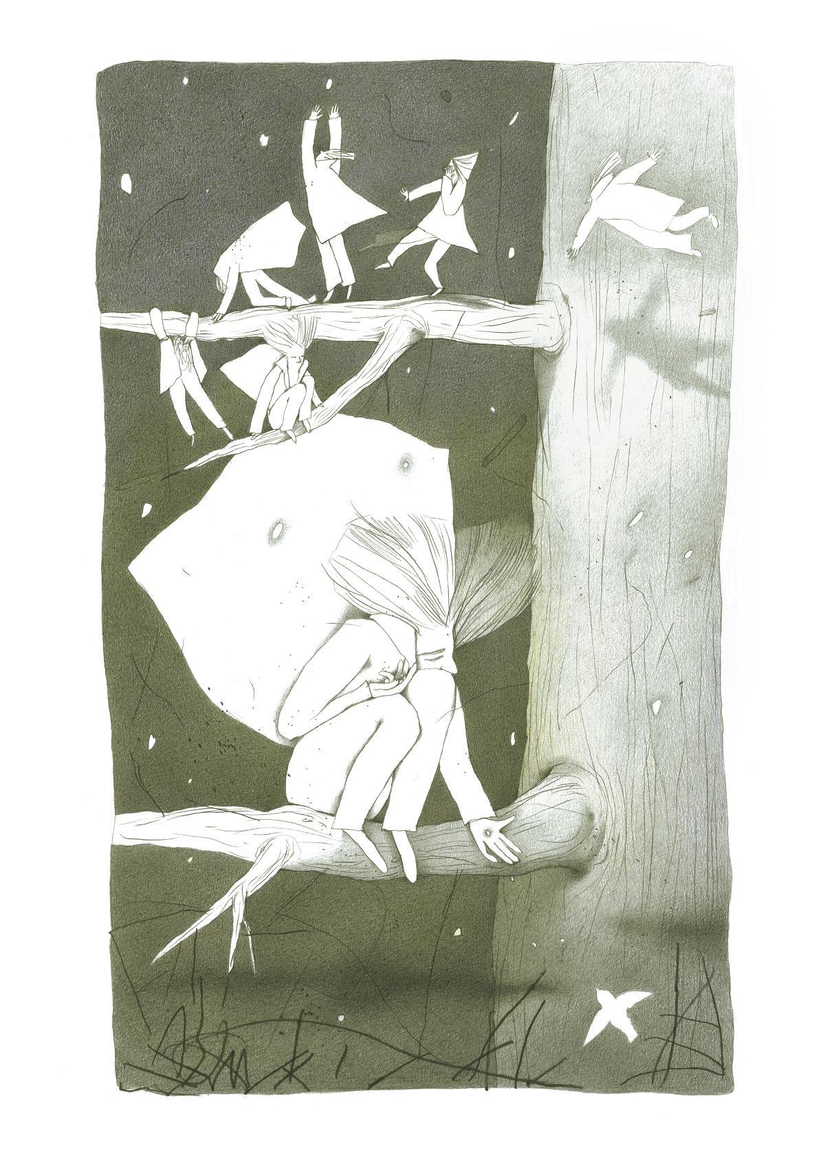 鸟儿插画欣赏