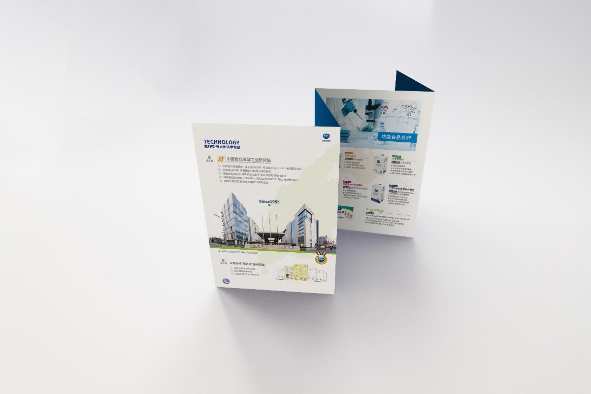 画册书籍设计