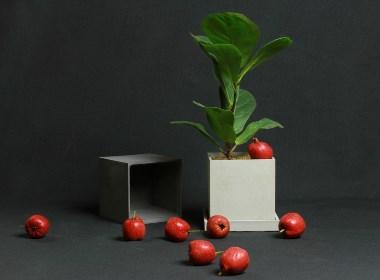 初牛原创纯手工正方形水泥花盆花器