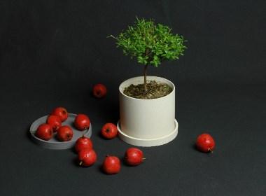 初牛原创纯手工圆形水泥花盆花器
