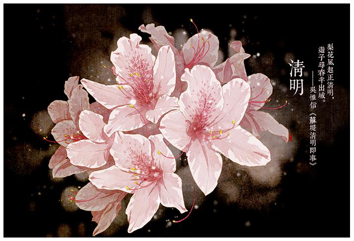 在24节气花卉插画中感受花之馨香 诗之清韵