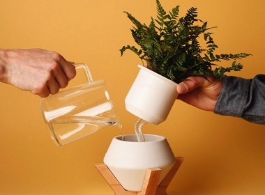 自带吸水功能的花盆