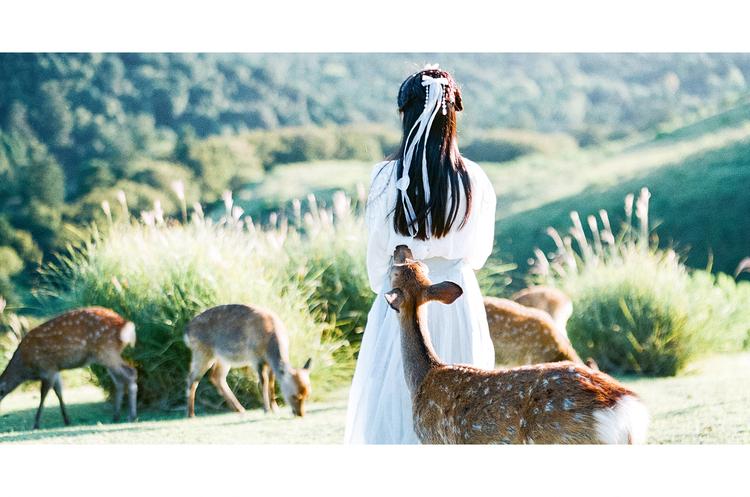 奈良有鹿—人像摄影