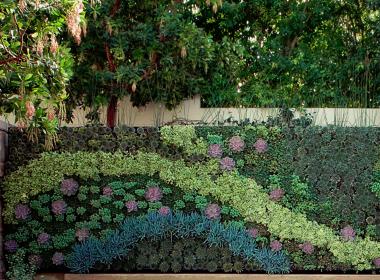 私家庭院|景墙