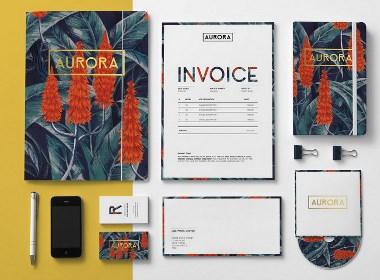 AURORA极光重彩手绘企业形象设计