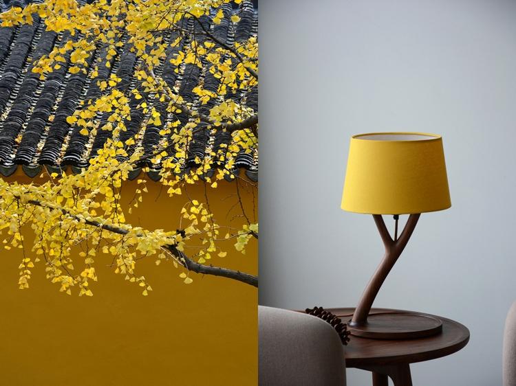 生长台灯:呈现自然与四季之美