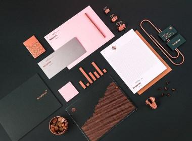 Hexarem工作室品牌时尚VI设计