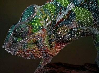 3D立体UV工艺