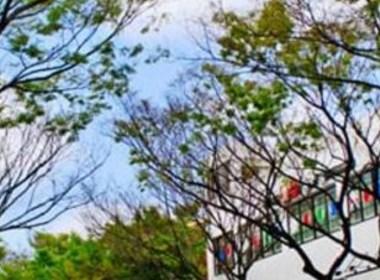 内江商业街设计丨内江商业街设计公司丨内江商业街装修设计公司