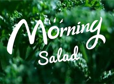 【转运猫品牌VI设计】Morning salad/一家互联网沙拉店