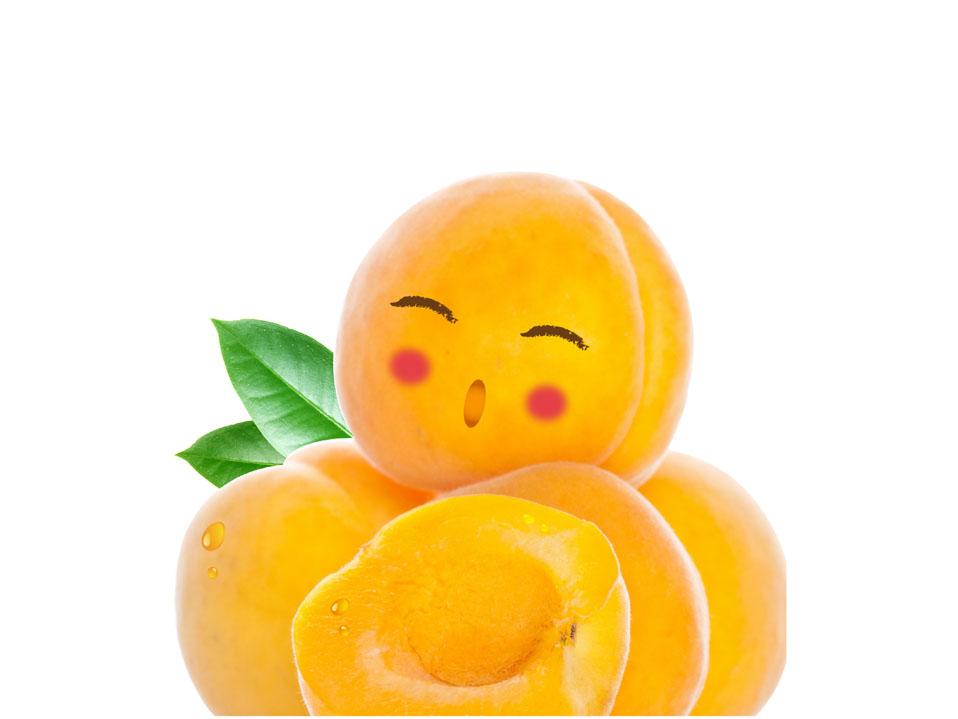 建德丰黄桃罐头
