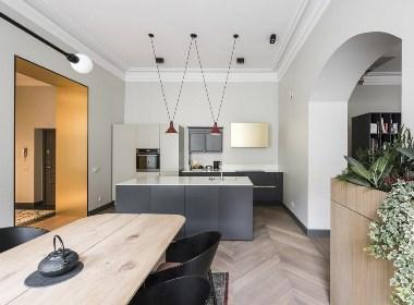 优质雅居 – 立陶宛私宅改造