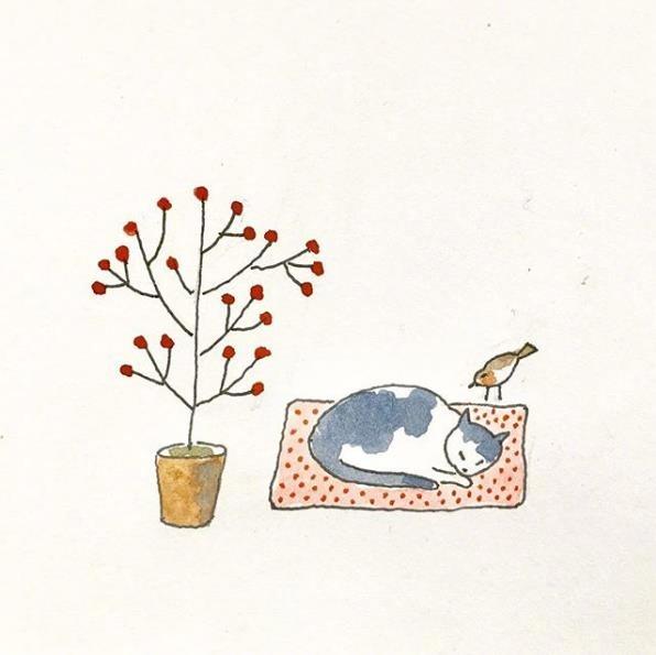 一只猫的幸福生活儿插欣赏