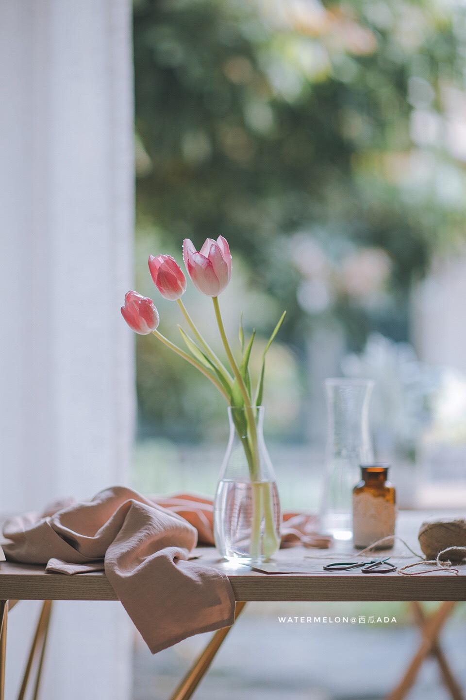 早春—静物摄影