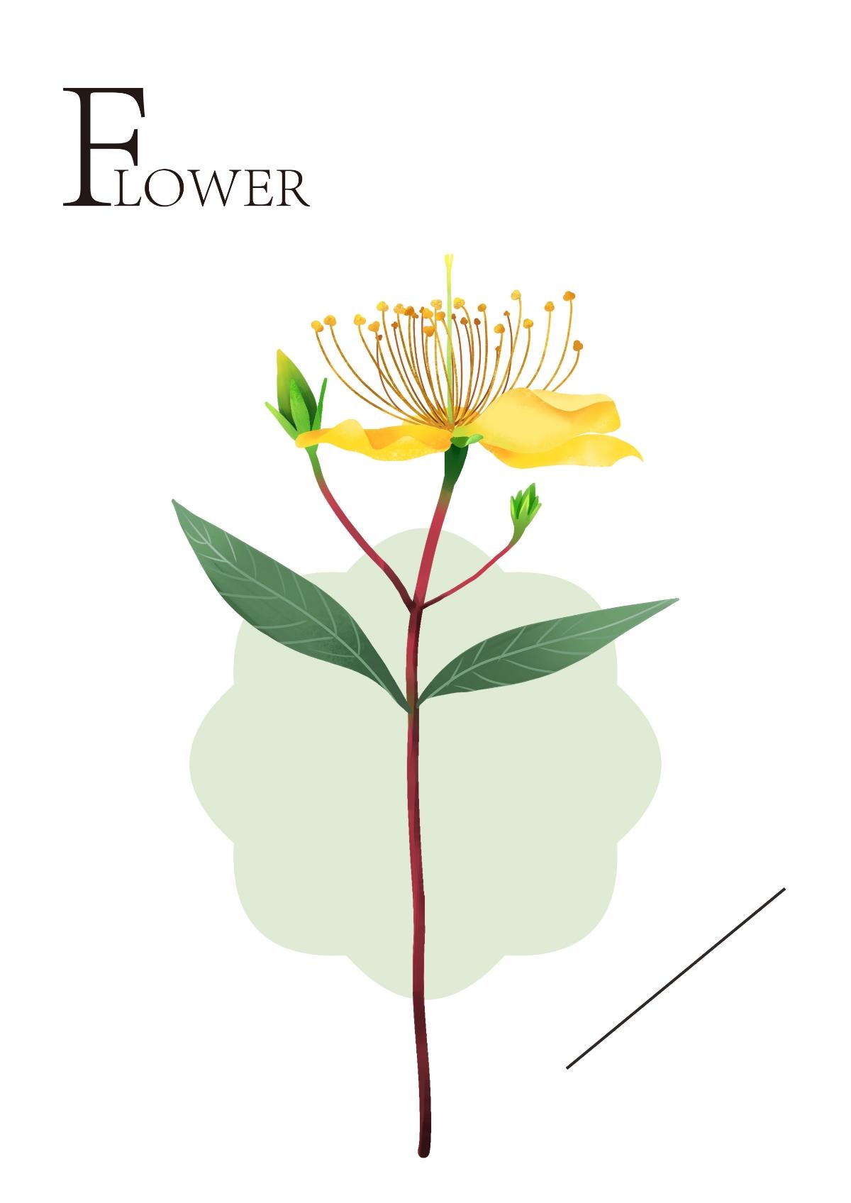 有时三点两点雨,到处十枝五枝花