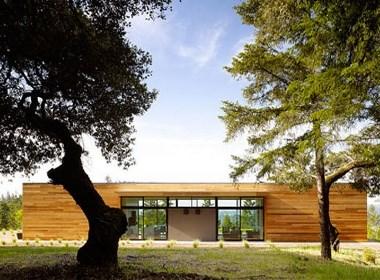领客云创:森林中美丽的绿色家园