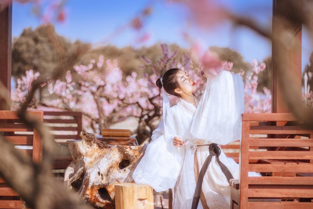 桃花酿—人像摄影