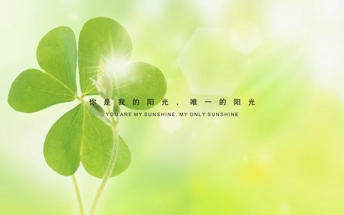 陕西省中善酒业蜂蜜酒包装设计,酒水包装设计,包装设计-----古一设计