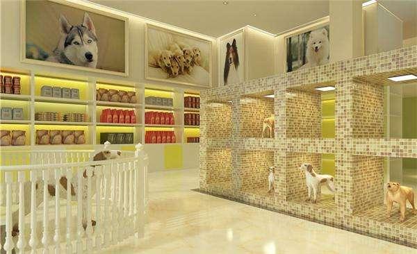 成都宠物店装修设计丨成都宠物店装饰公司丨成都宠物店设计