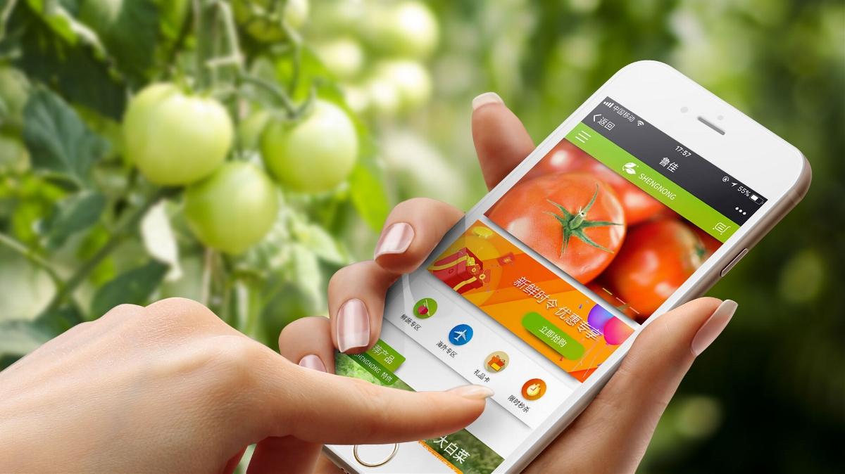 盛农庄园微信平台设计及开发
