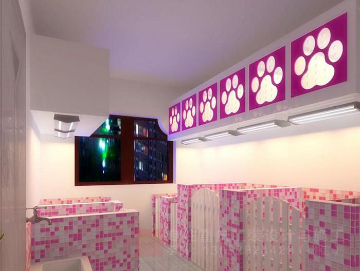 重庆宠物店宠物医院装修设计效果图「重庆观景装饰」
