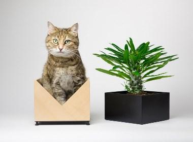 创意花器设计欣赏