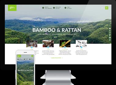 Flow Asia为INBAR网站提供自适应网站设计