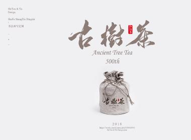 500年古树茶缘