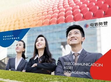 电信资管(中国电信-中国通信服务--陕西)品牌VI设计 渡岸创意www.duanad.com