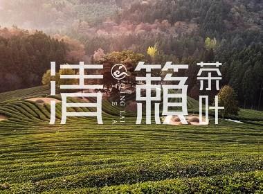 茶叶LOGO及品牌形象设计【黑马奔腾策划设计】