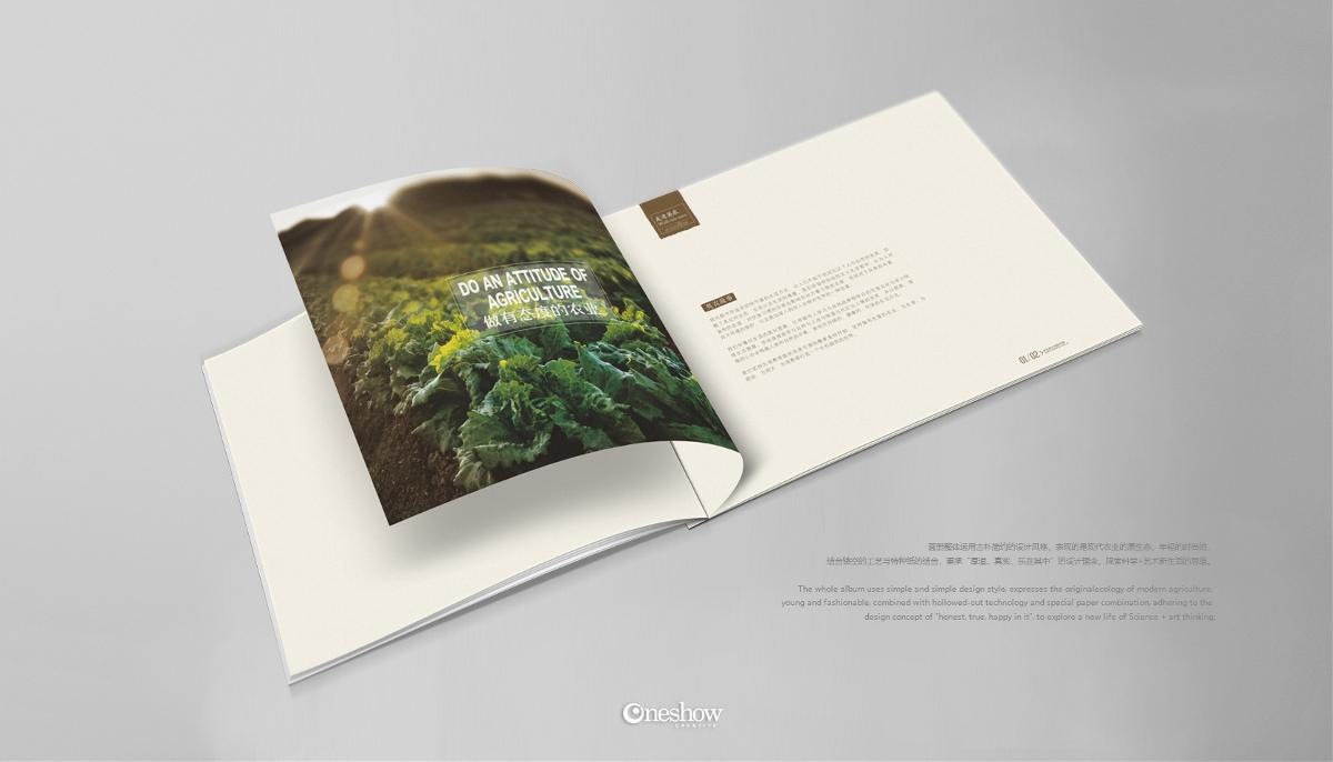 食品公司画册设计,宣传册设计,企业形象画册设计,书籍设计