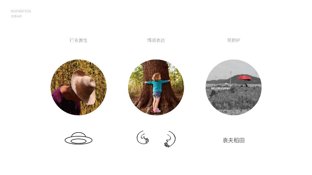 袁夫稻田品牌升级案例