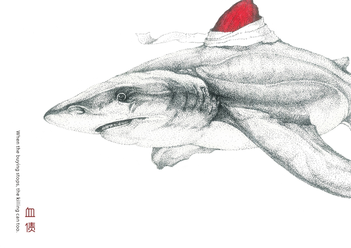 海洋动物保护 广告设计