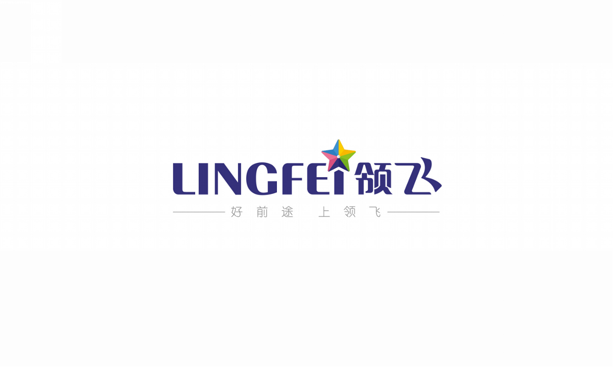 领飞——徐桂亮品牌设计