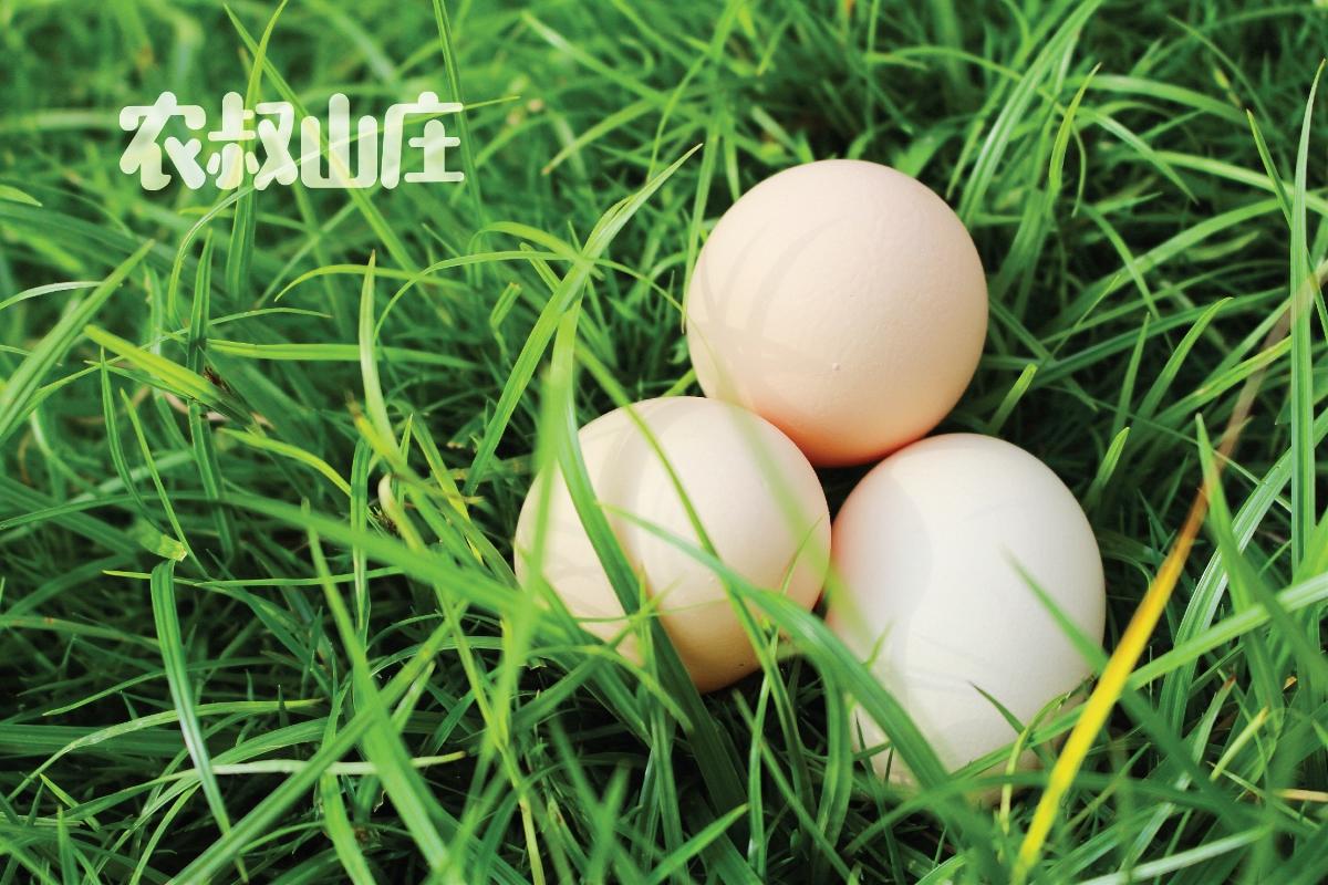 农夫山庄卤蛋