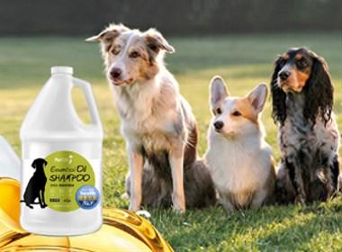 宠物天然沐浴露品牌包装设计