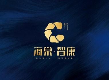 海棠智康 养生项目