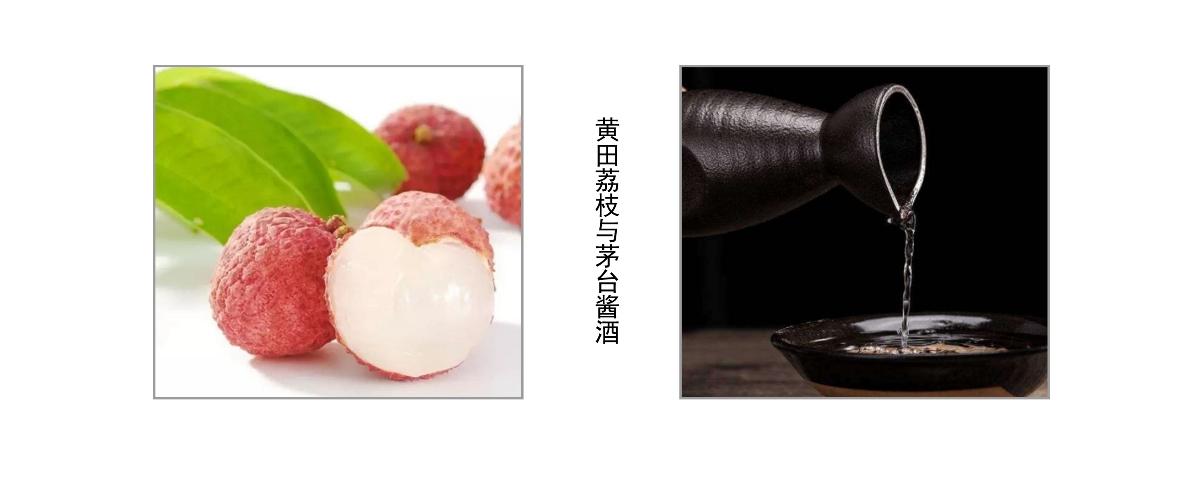 白酒包装设计(荔枝酒)