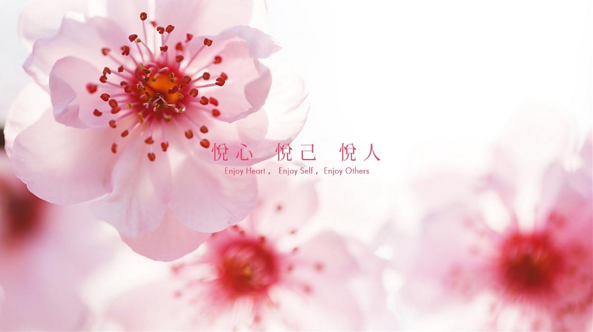 天生红悦容颜丨红枣酵素包装设计