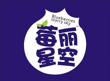 莓丽星空 · 蓝莓酵素果汁 酵素果汁饮品 | 产品包装设计 · 礼盒形象设计