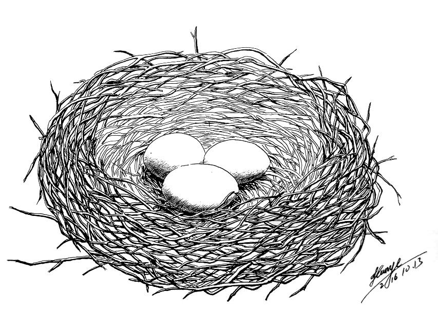 空心萝卜7:百度圆珠笔画吧大吧主,手绘圆珠笔画微信公众号创始人(插画赏第一篇)