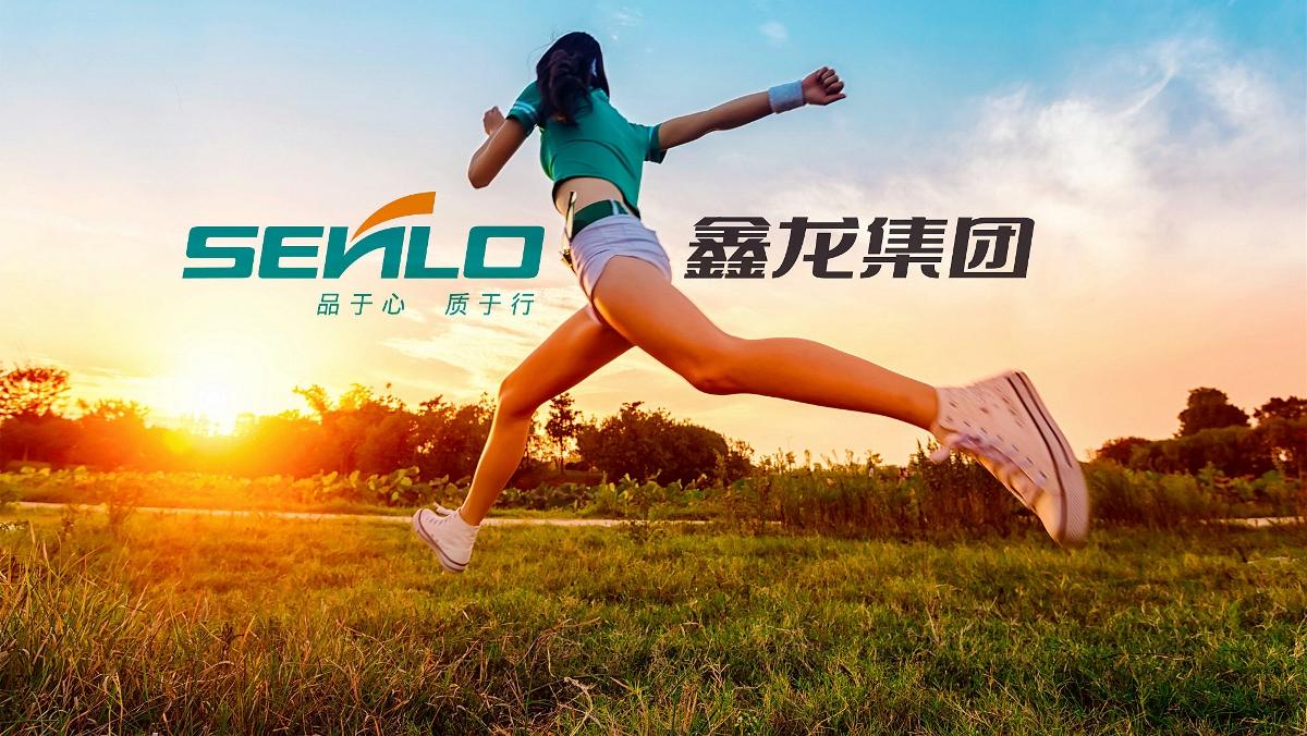 鑫龙文体集团品牌形象重塑-太歌创意