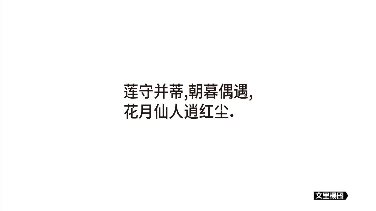 文里杨国.千子莲手削纯藕粉礼盒装-原创食品包装设计