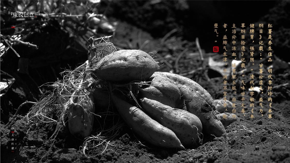 「太康红醋」 品牌&包装设计