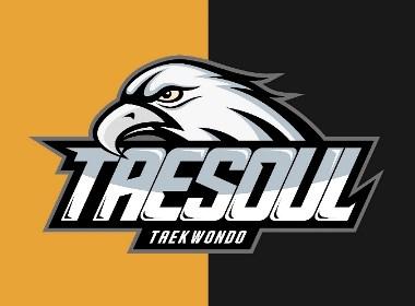 跆拳道館 標志設計 logo 品牌