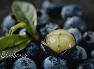 淘宝生鲜拍摄--蓝莓